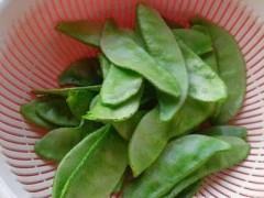 扁豆的营养成分,扁豆的食用禁忌!