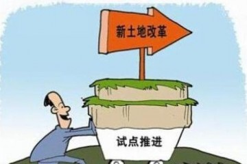 土地有偿退出有哪些试点区域?每亩补偿多少?